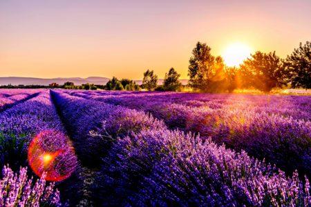 Premium Camping in der Provence: traditioneller Südfrankreich Urlaub mit einem Hauch Luxus