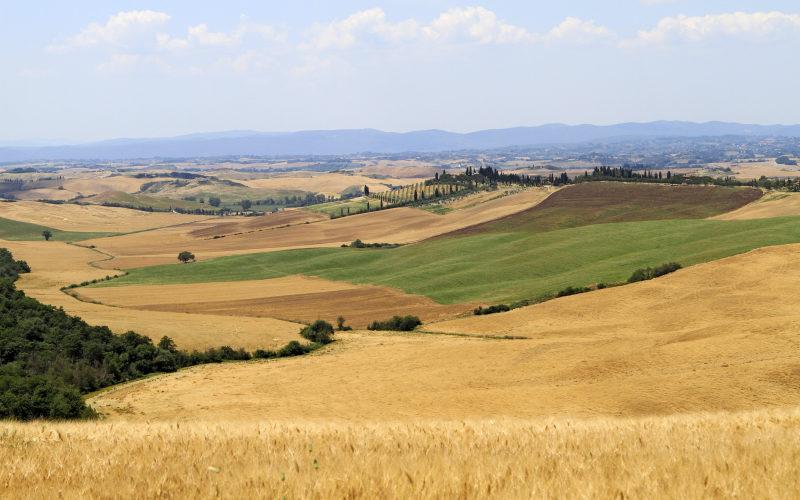 Premium Camping in der Toskana: Camping Siena Colleverde