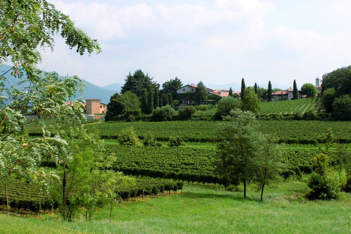 Premium Camping in der Toskana: Camping Toscana Village