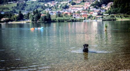 Premium Camping in Italien: Camping San Cristoforo in Südtirol