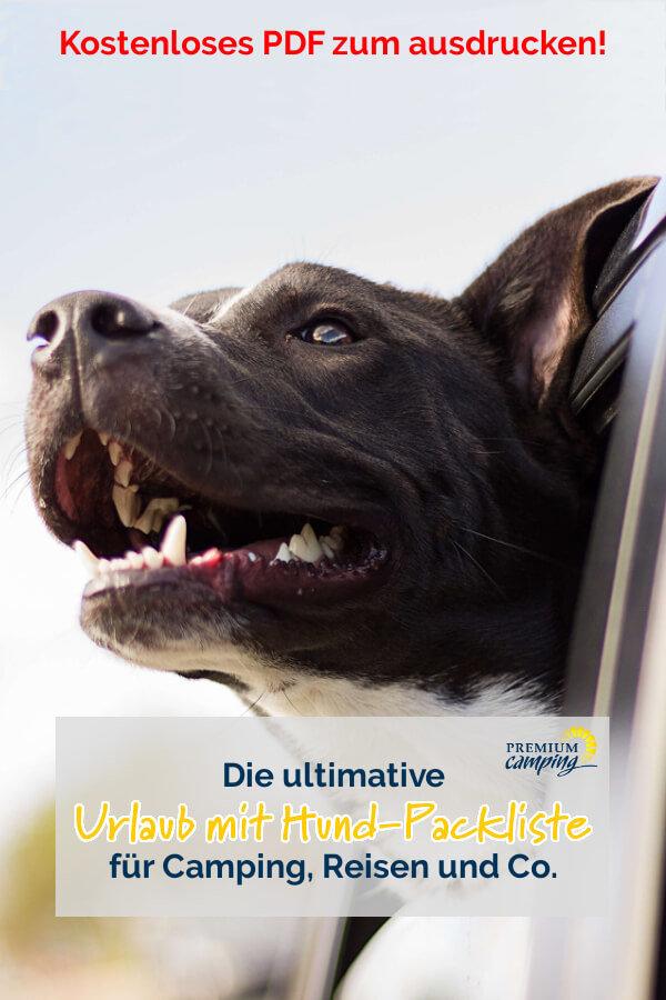 Die ultimative Camping Packliste für deinen Urlaub - Urlaub mit Hund- Premiumcamping.de